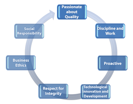 RAWELT Institutional Values Cycle